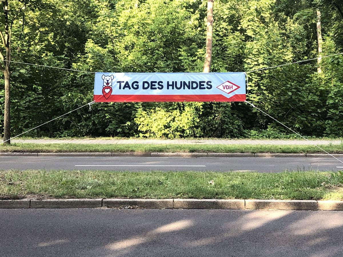 Tag des Hundes 2019 in Berlin